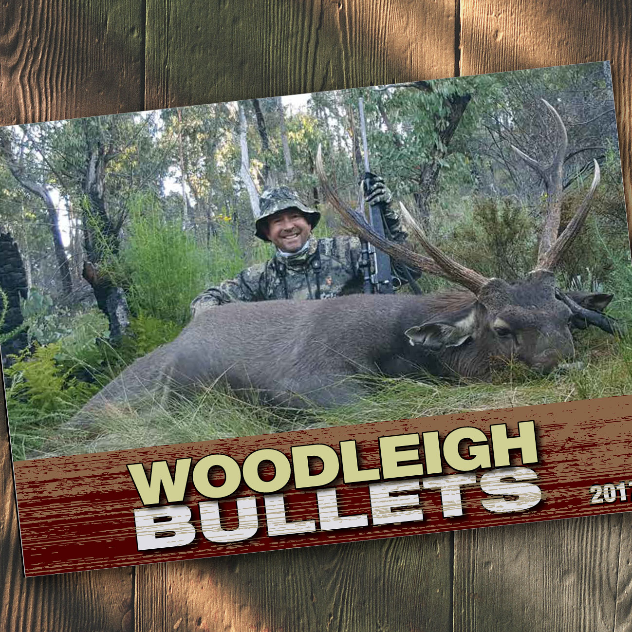 Woodleigh Bullets Catalogue 2017