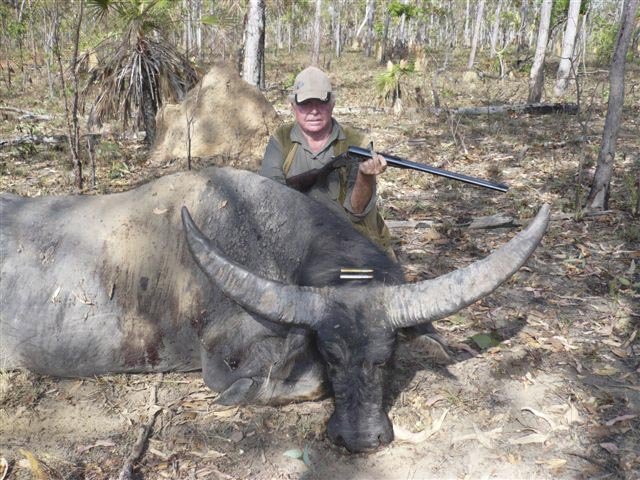 Mr Milton Gillard Australia And Asian Buffalo Taken In NT With Alex Henry 470 Nitro Express One Shot Using Federal Factory Ammunition Loaded Withh 500gr Woodleigh Weldcore Round Nose Soft Nose Bullet