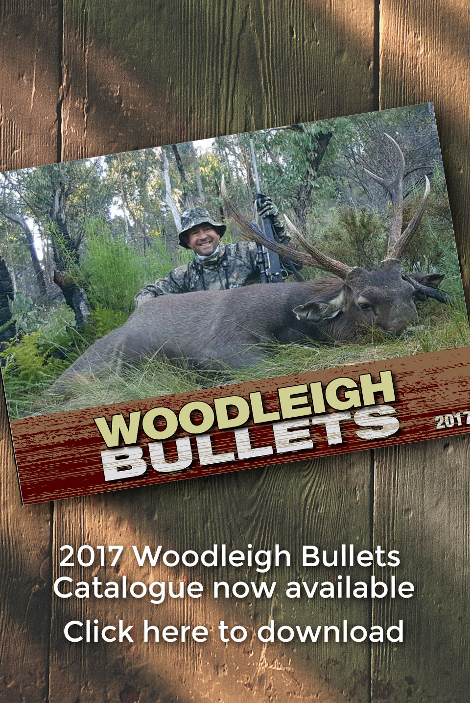 Woodleigh Bullets 2017 Catalogue